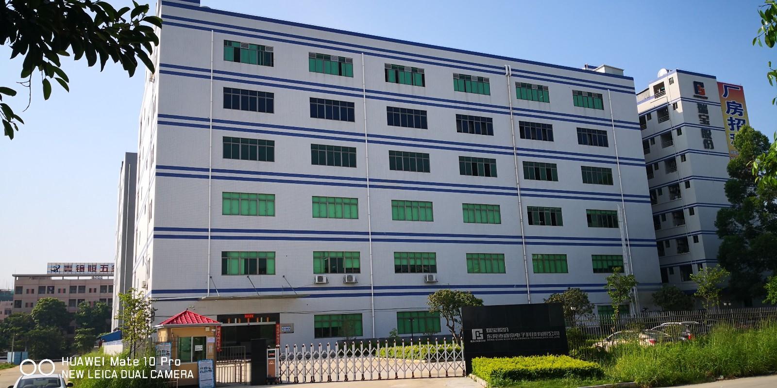 东莞市睿奇电子科技有限公司项目自行验收意见
